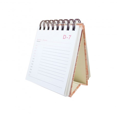 Carnet planner planificateur 100 jours kawaii chat pirate