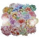 Lot de 5 cartes postales - fleurs