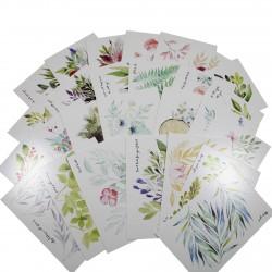 Lot de 5 cartes postales - feuilles