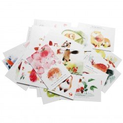 Lot de 5 cartes kawaii Animaux